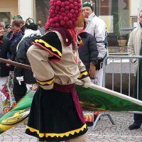Bild0036_Narrentreffen_BS_2006