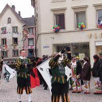Bild0048_Narrentreffen_BS_2006