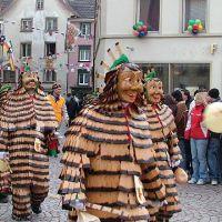 Bild0121_Narrentreffen_BS_2006