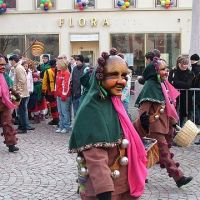 Bild0135_Narrentreffen_BS_2006