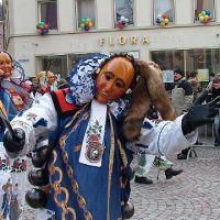 Bild0139_Narrentreffen_BS_2006