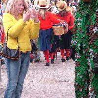 Bild0147_Narrentreffen_BS_2006