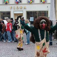 Bild0158_Narrentreffen_BS_2006
